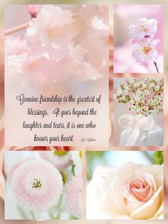 A blessed day to you and J. Thank you our beloved friend, we love you. Word Collage, Color Collage, Genuine Friendship, Friendship Quotes, Beautiful Collage, Beautiful Words, Collages, Origami, Mood Colors