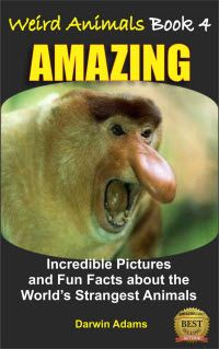Kindle FREE Days:  April 18 – 19      ~~ WEIRD ANIMALS #4 ~~   AMAZING – Incredible Pictures and Fun Facts about the World's Most Unusual Animals