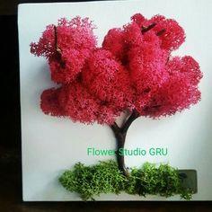 Moss Wall Art, Moss Art, Island Moos, Moss Decor, Orchid Arrangements, Home Flowers, Moss Garden, Flower Studio, Green Gifts