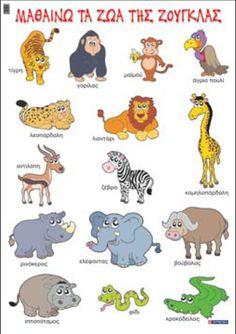 Τα ζώα της ζούγκλας | 1o Νηπιαγωγείο Μελίτης Φλώρινας