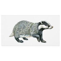 Illustration of European Badger or Eurasian badger Poster