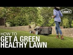 Lawn Care 101: How to Weed, Seed, Feed, Mow, & Water - YouTube