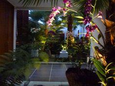 Orchids Casa de Campo, La Romana Dominican Republic