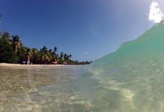 Les Salines -  Photos de vacances de Antilles Location #Martinique