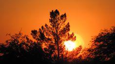Nostalgic Sunset