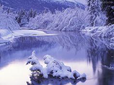 karlı ormanda akan nehir