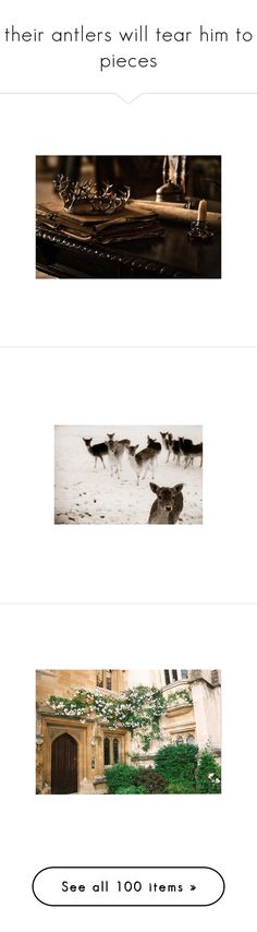 """their antlers will tear him to pieces"" by franthenanny ❤ liked on Polyvore featuring backgrounds, game of thrones, images, photos, pics, animals, pictures, places, fillers and scenery"