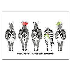 Festive Zebras wearing xmas cracker hats and holly