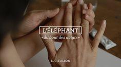 L'éléphant, du bout des doigts