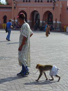 Fotografía: Sandra Rastelli - Marrakech