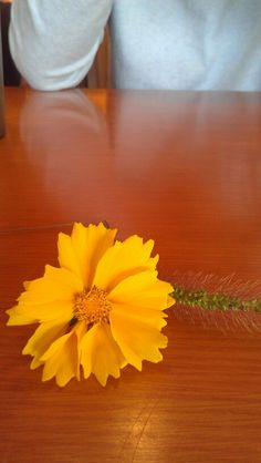 flower he gave to me