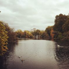 Clouds gathering over St James's Park in #London this afternoon 10°C I 50°F #BurberryWeather