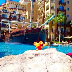 A morning break to take in the surrounding beauty is just what you need. Don't you think Mickey? #VillaDelArco #cabo