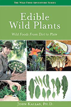 Edible Wild Plants Wild Foods from Dirt to Plate