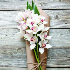 Get a free bouquet: https://www.thebouqs.com/invite/e422c&bcid=1057  Adelaide | A white Spray Orchid flower bouquet