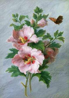 Cornelis van Spaendonck - Hibiscus against a Marble Ledge