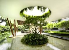 Beautiful - reminds me of a cenote· Willow House by Guz Architects