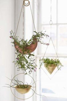 Perfect voor een klein huisje: hangplanten! - Roomed