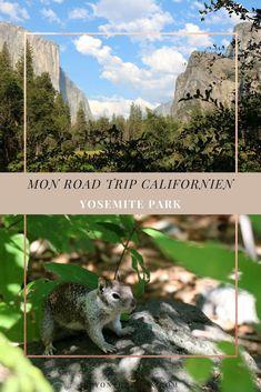 Blog Photographie Voyage USA Californie Voyage USA Californie Yosemite