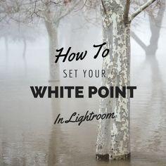 How to set white point in Lightroom Nikon D3200, Dslr Nikon, Dslr Cameras, Photoshop For Photographers, Photoshop Tips, How To Use Lightroom, Photoshop Course, Photoshop Elements, Photoshop Photography