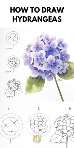 Flower Art Drawing, Flower Drawing Tutorials, Flower Sketches, Floral Drawing, Flower Sketch Pencil, Realistic Flower Drawing, Fabric Drawing, Fabric Painting, Watercolor Art Lessons