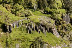 Les pierres de basaltes surgissent partout en #NouvelleZélande  http://www.breizh-zelande.fr/auckland-wellington-te-kuiti/
