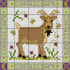 ZODIAC Capricorn chart