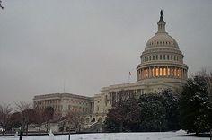 Política de los Estados Unidos - Wikipedia, la enciclopedia libre