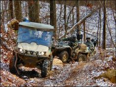 ATV riding at WindRock Park -- I love to go when there's snow on the ground there.  It's so pretty!