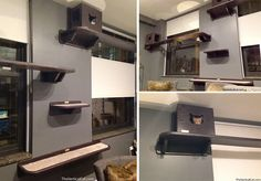 Maha wanted to Catify her apartment in Chicagofor her three black cats Mo, Yasmina, and Rami (and orange foster, Joe, who has since found a forever home), so she called in the team at The Vertical Cat to create this custom installation. The Catification elements needed to blend seamlessly with her beautiful contemporary decor, plus…