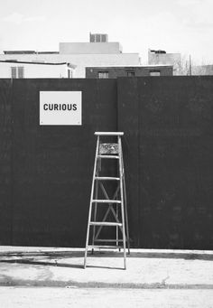 Curious | Enthusiastic | Involvement