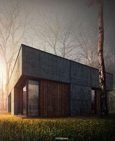 House no. 95 by Adam Spychała, via Behance