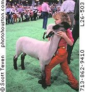 A girl showing her market lamb during a livestock competition at the Houston rodeo.