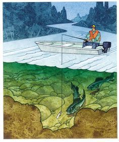 awesome 5 top jig-fishing tactics for walleye by http://www.dezdemon-exoticfish.space/walleye-fishing/5-top-jig-fishing-tactics-for-walleye-2/