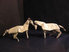 cavalli di DAVID BRILL