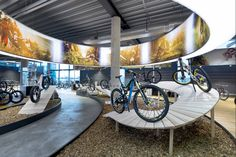 Store of the week: Rose Biketown swerves ahead of the competition Bicycle Cafe, Bicycle Store, Bike Experience, Bike Sketch, Showroom Interior Design, Bike Poster, Bicycle Workout, Exhibition Stand Design, Kids Bike