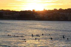 Morning surf in Bondi Beach by Morning Bondi