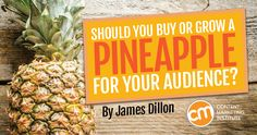 What do pineapples have to do with content marketing?