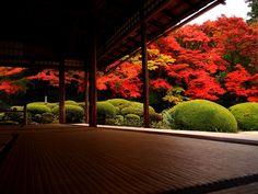 Someday, surely someday......Kyoto......