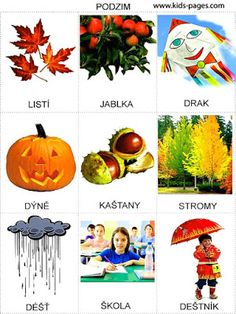 Pro Šíšu: Období ZIMA Autumn Activities For Kids, Outdoor Activities, Weather For Kids, Language Dictionary, Learning English For Kids, Picture Composition, Preschool Themes, Seasons Of The Year, Holidays And Events