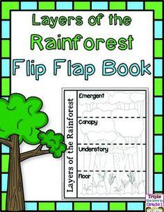 Rainforest Preschool, Rainforest Classroom, Rainforest Crafts, Rainforest Project, Rainforest Habitat, Rainforest Theme, Rainforest Animals, Reptiles Preschool, Teaching Science