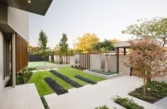 Modern garden with nice lines and contrasts