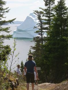 I want to see an iceberg on my hike!   Newfoundland and Labrador
