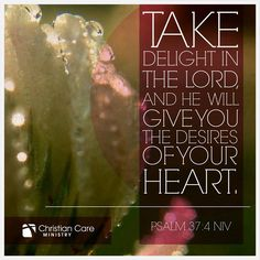 """Psalm 37:4 NIV """"Take delight in the Lord & he will give you the desires of your heart"""""""
