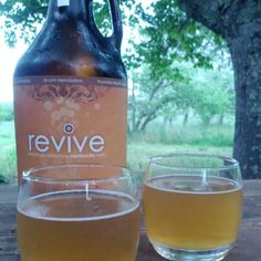revive drinks kombucha made in sonoma- local, reused bottles and good for digestion!