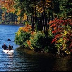 Lake Arrowhead offers lake living at its finest Great Places, Beautiful Places, San Bernardino National Forest, Snow Valley, Big Bear Lake, Redwood Forest, Lake Arrowhead, Mountain Vacations, Lake Cabins