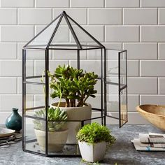 Michelle - Blog #Mini #greenhouses Fonte : http://www.westelm.com/products/greenhouse-terrarium-collection-d978/