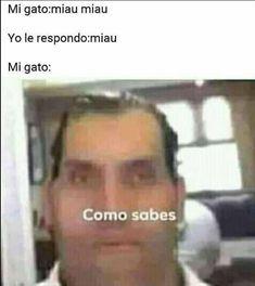 Funny Spanish Memes, Spanish Humor, Funny Relatable Memes, Memes Estúpidos, Stupid Memes, Best Memes, Bad Puns, Meme Faces, Pokemon Memes