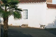 Yeu 2007 © Tristane de La Presle