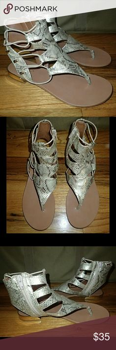 Aldo Gold Sandals 6.5 ℹ️ Worn once inside as shown, no damage - comes with box.  👍 Smoke-free, pet-free household.   🚫 No trades/swaps!  🚫 No holds!  🚫 No low-balling!  🚫 No PayPal!   ✔ Reasonable offers welcomed! Please use the offer button so I know you are serious about the item! I will not respond to price negotiations via comments.  ✔ I love bundling! Not only will you get ONE shipping fee, I will also discount your combined total! Please ask me in the comments!  😜 Happy poshing…